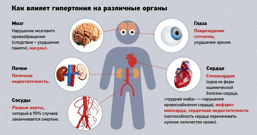 Имбирь при гипертонии: полезен или нет
