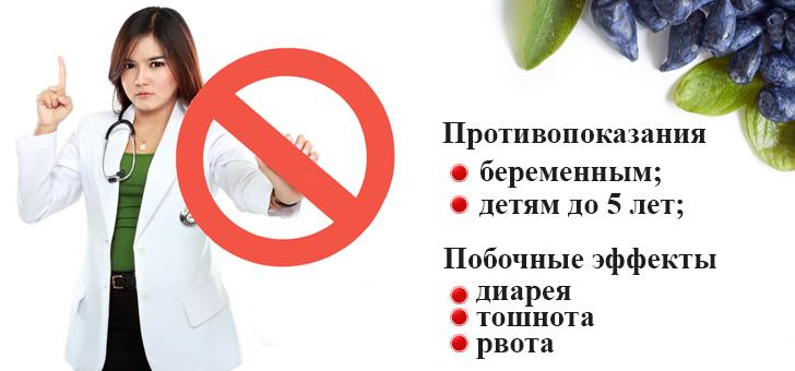Запрет к употреблению жимолости